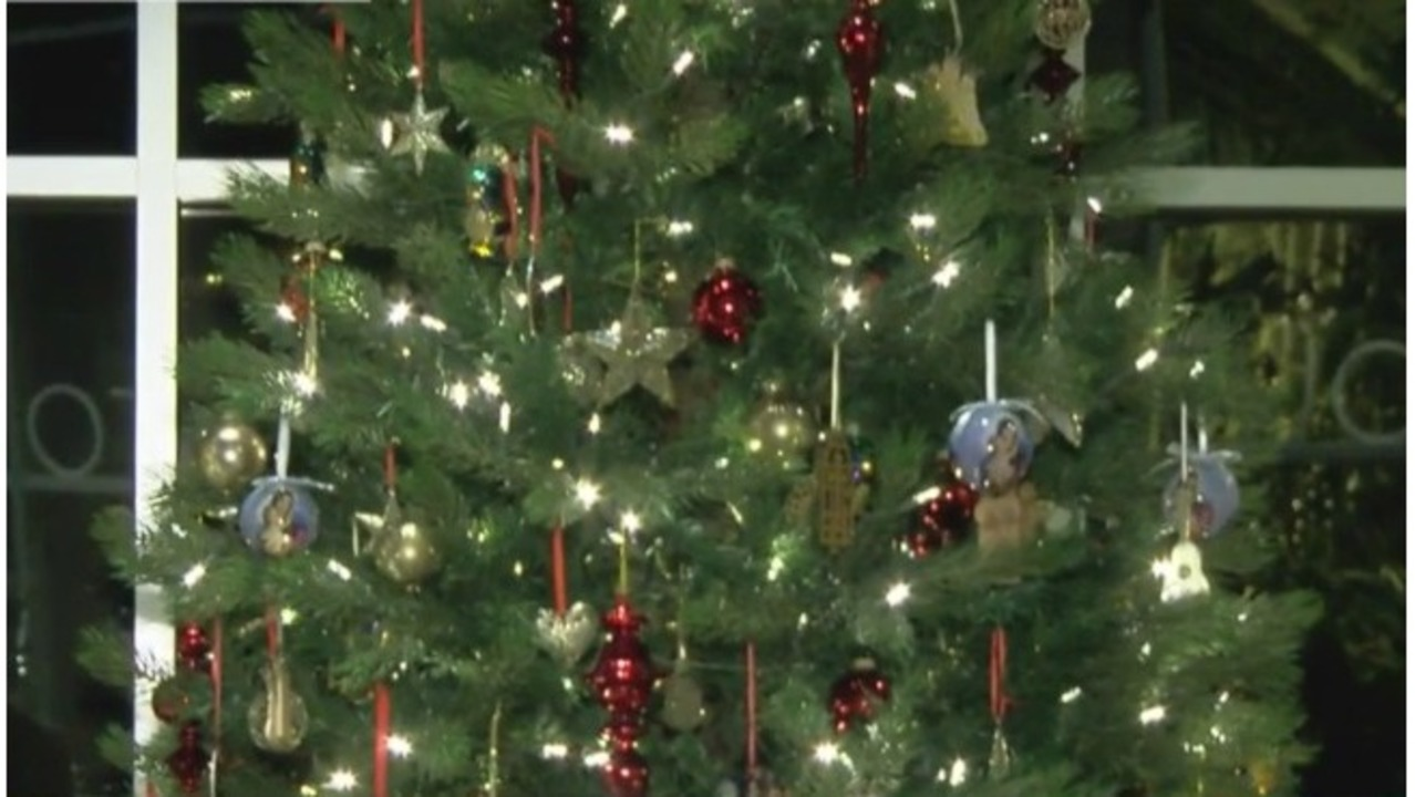 frederik meijer gardens holiday exhibit opens tuesday