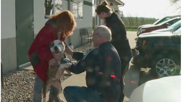 285 days later: 'Death row' dogs head home to veteran