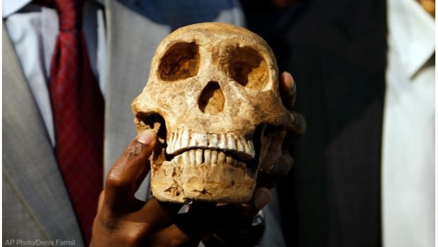 Scientists in South Africa reveal more on human-like species