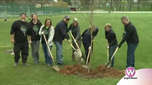 Mayor's initiative brings in hundreds to 'green up' GR