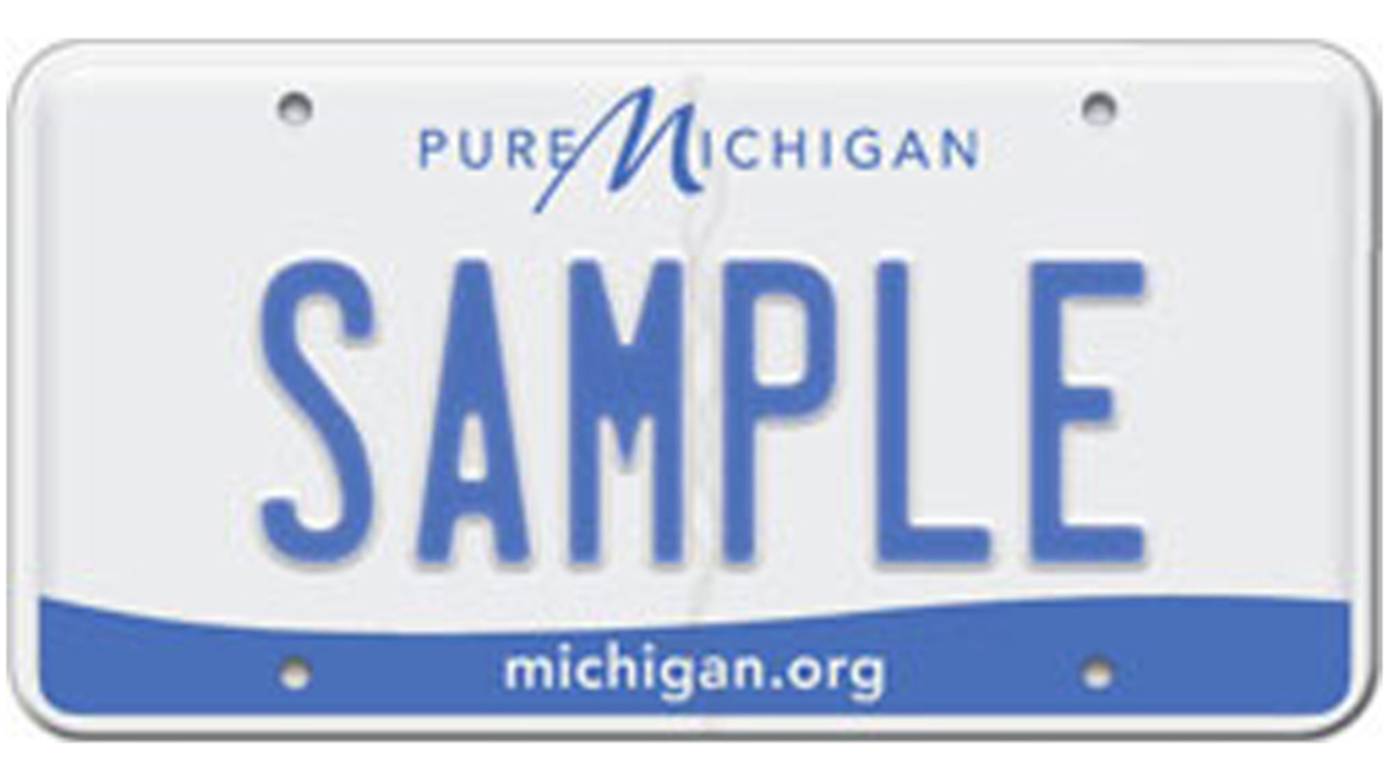 Snyder approves 30-day license plate grace period