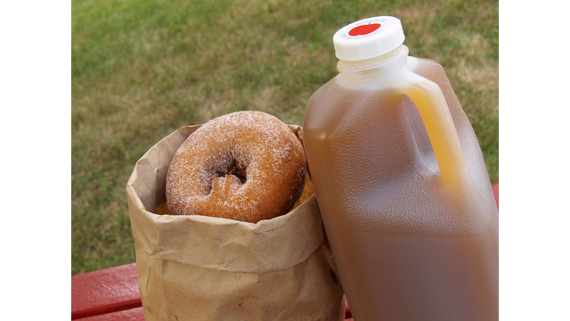 Cast your vote: best cider and donuts in West Michigan
