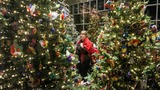 Photos: Meijer Gardens' Holiday Traditions exhibit