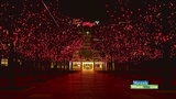 Battle Creek lights up with their Winter Festival