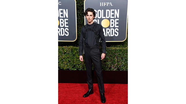NOT SIZED golden globes red carpet 010619 getty_1546824991106