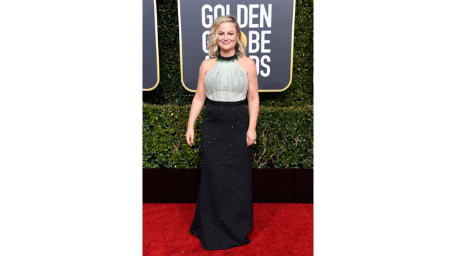 NOT SIZED golden globes red carpet 010619 getty_1546824958215