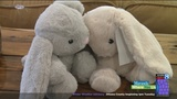 How one stuffed animal is helping soothe kids in foster care