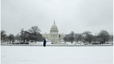 Dueling Senate bills would end shutdown in different ways