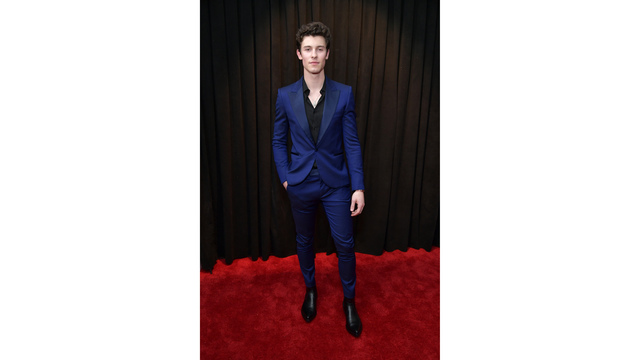 NOT SIZED grammy awards shawn mendes 021019_1549844648848