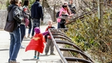 Photos: Superhero Day at John Ball Zoo